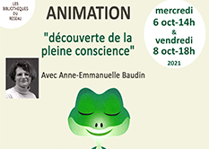 """Bibliothèque de Sigoulès-et-Flaugeac : Animation """"Découverte de la pleine conscience"""""""